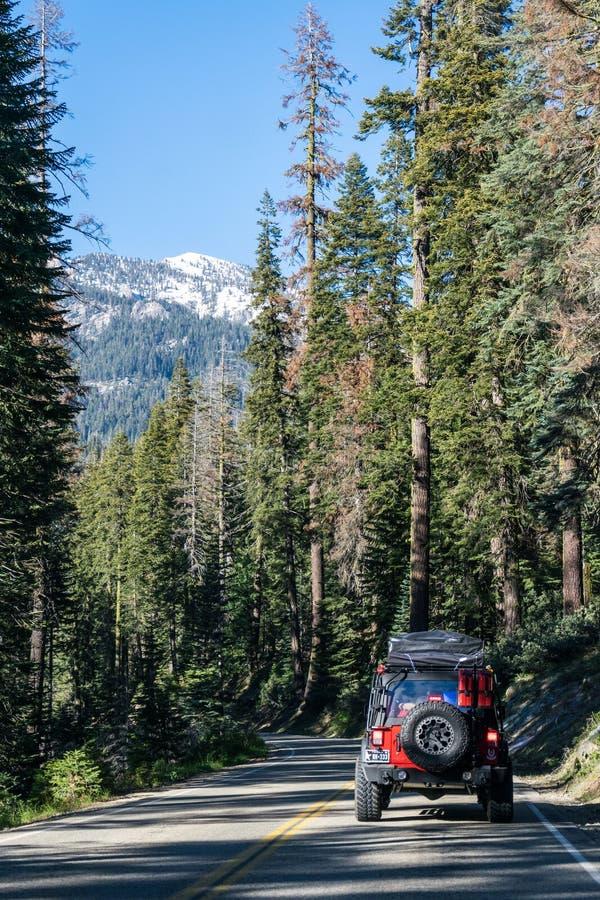 Carro do turista na sequoia e no parque nacional dos reis Garganta, Califórnia, EUA Viagem do carro em um carro fora de estrada n imagem de stock royalty free