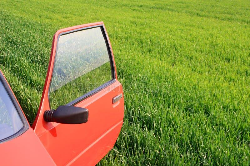 Carro e grama verde imagem de stock
