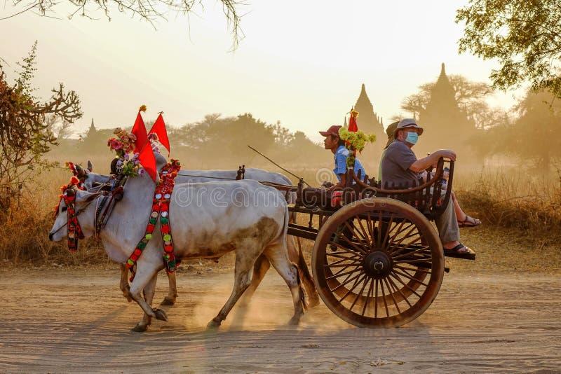 Carro en la manera al templo de Thatbyinnyu imagen de archivo