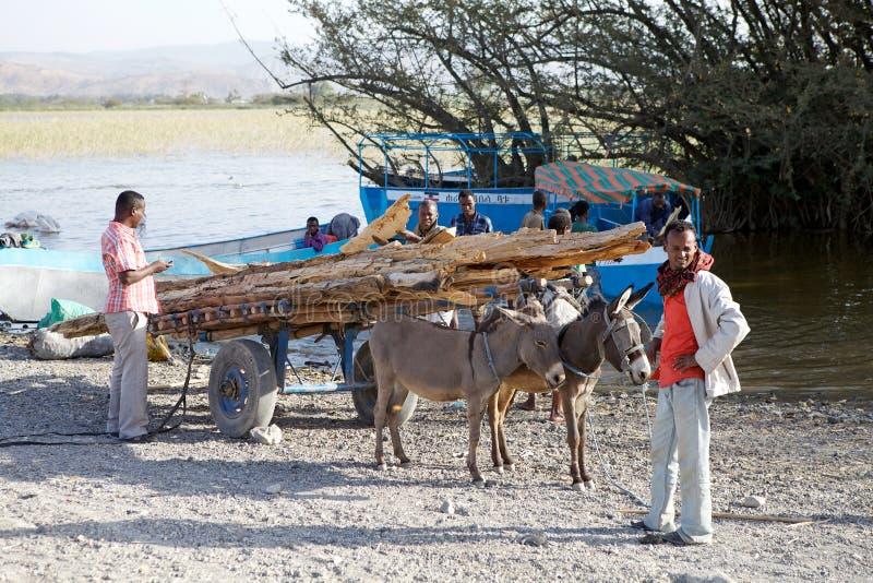 Carro etíope del burro foto de archivo libre de regalías