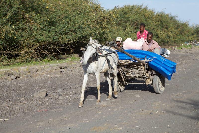 Carro etíope del caballo foto de archivo libre de regalías