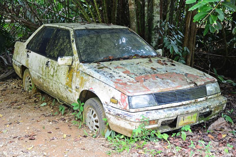 Carro muito velho na floresta fotos de stock royalty free