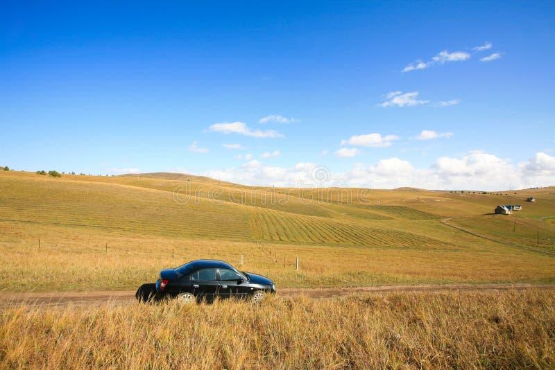 Carro na estrada entre prados fotos de stock
