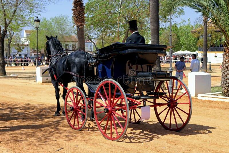 Carro que conduce por un caballo negro imagen de archivo libre de regalías