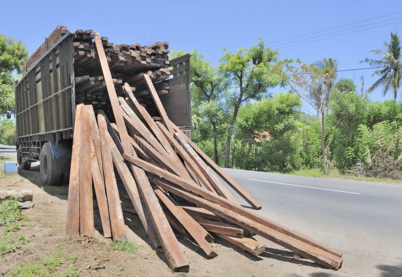 Carro que saca datos la madera dura tropical foto de archivo libre de regalías