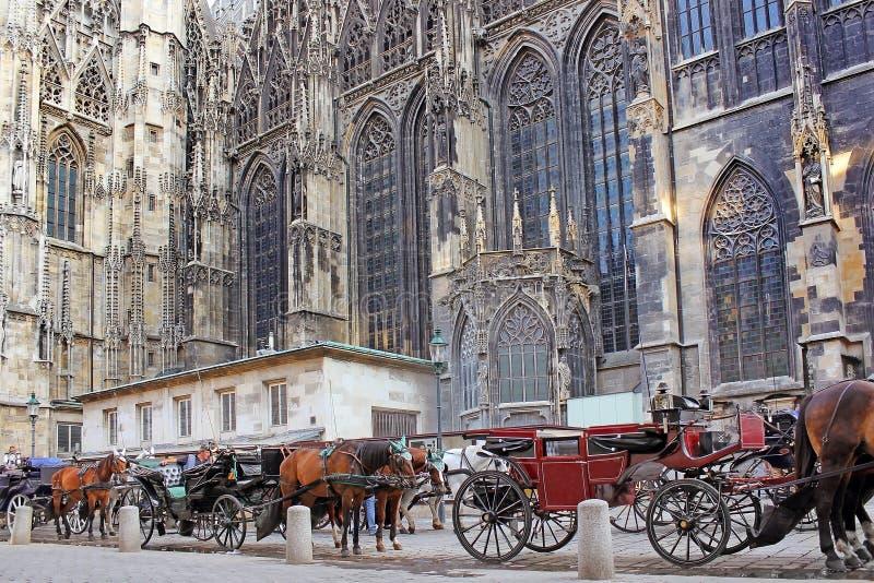 Carro traído por caballo, cerca de la catedral de St Stephen, Viena fotos de archivo