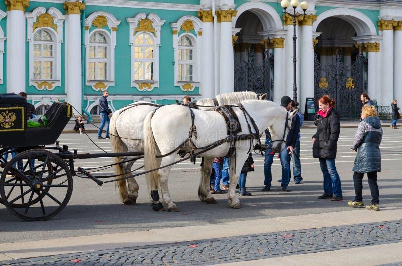 Carro traído por caballo en cuadrado del palacio delante de la ermita del estado, St Petersburg, Rusia imagen de archivo