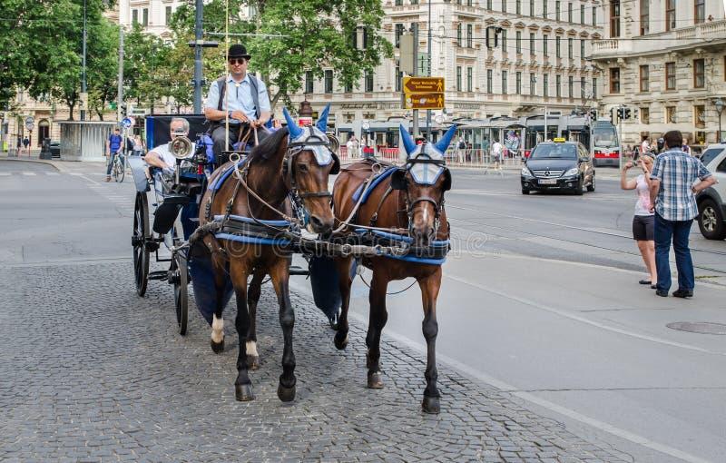 Carro traído por caballo en el centro de la ciudad de Viena fotografía de archivo libre de regalías