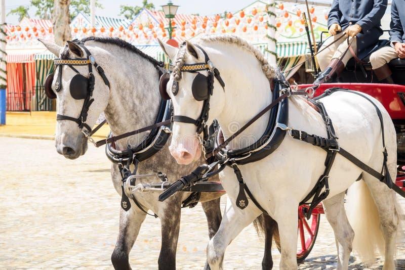 Carro traído por caballo en la feria de Sevilla imágenes de archivo libres de regalías