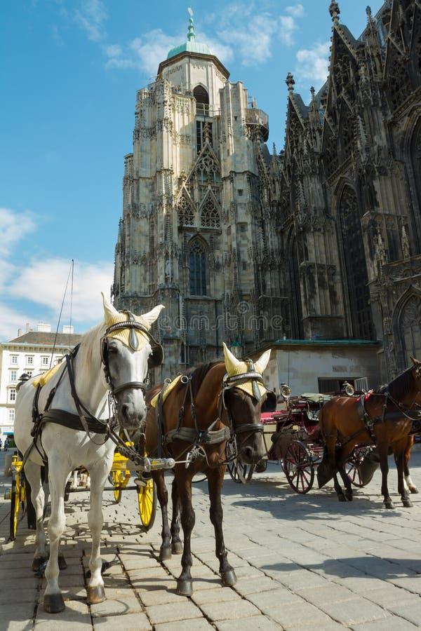 Carro traído por caballo en Viena foto de archivo