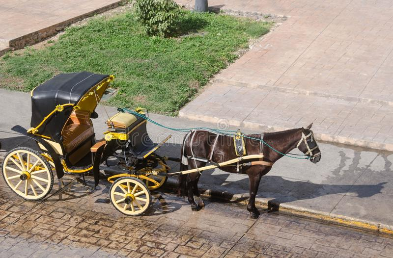 Carro traído por caballo tradicional en Izamal, Yucatán, México fotos de archivo