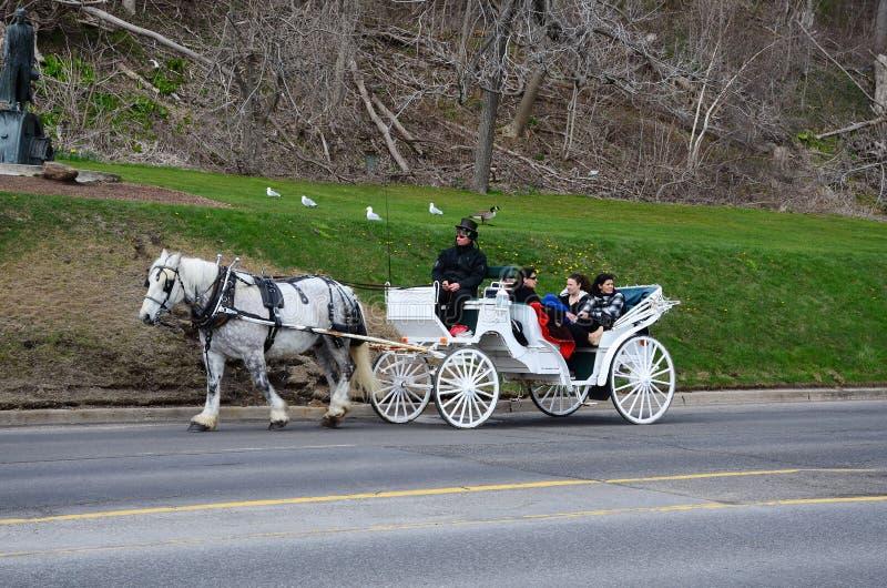 Carro trainato da cavalli immagine stock libera da diritti