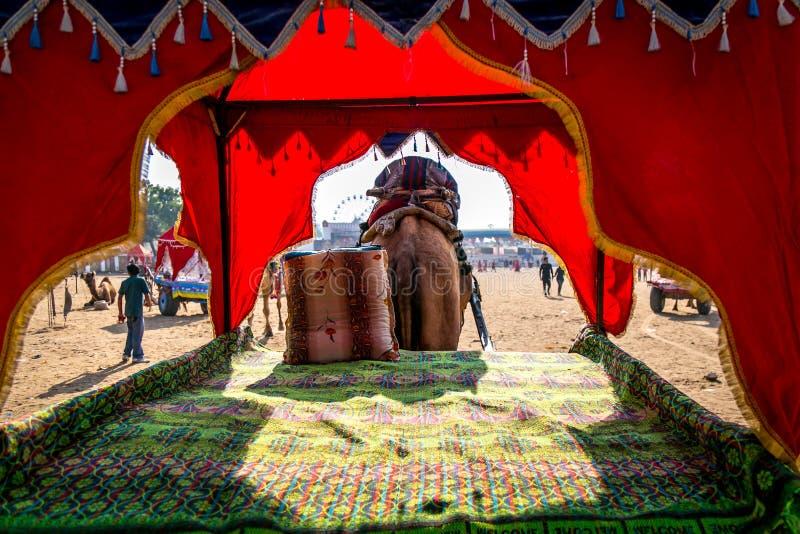 Carro vacío adornado hermoso del camello para el paseo del safari del desierto durante festival justo del camello en Pushkar, Raj fotografía de archivo
