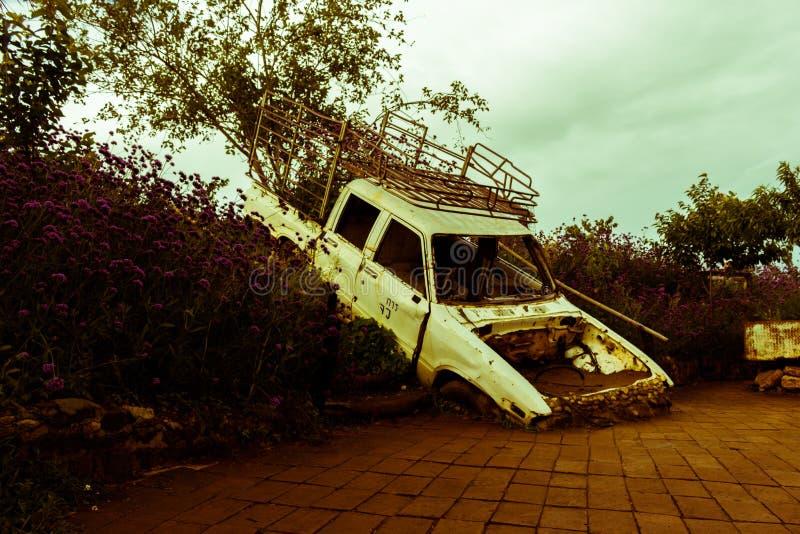 Carro velho no campo de flor fotografia de stock royalty free