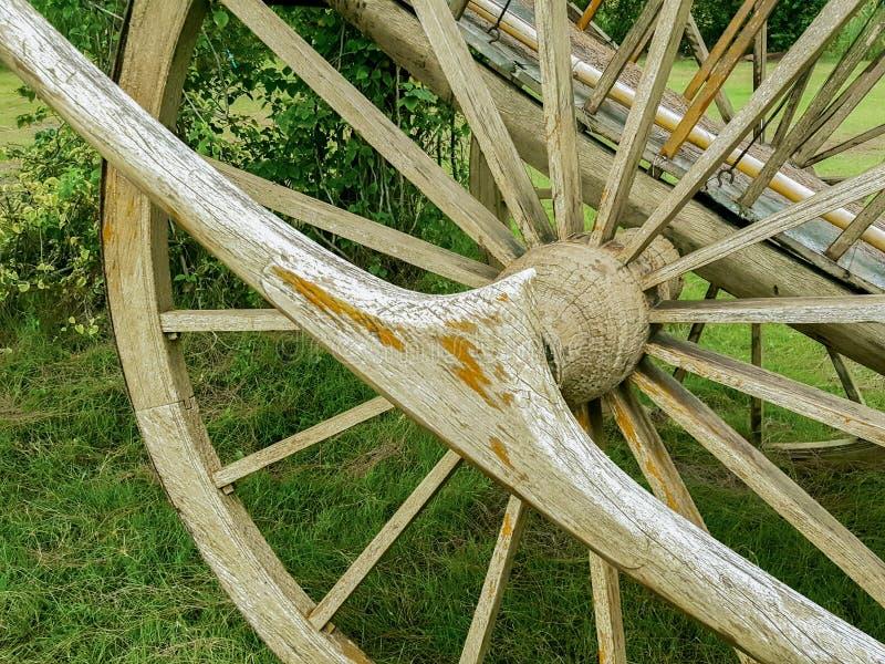 Carro viejo hecho con madera en el jardín imagen de archivo libre de regalías