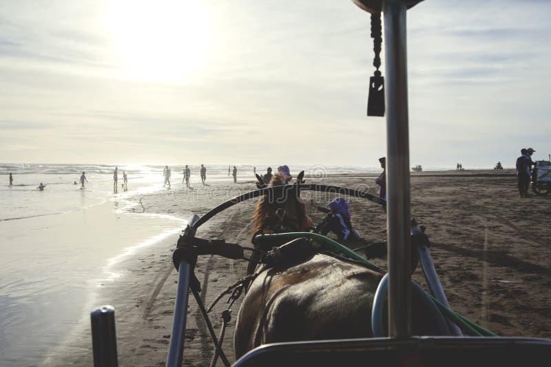 Carro y gente del caballo en la playa imagen de archivo libre de regalías