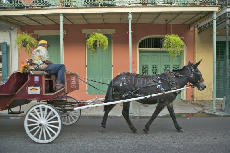 Carro y turistas del caballo en el barrio francés de New Orleans, Luisiana fotos de archivo