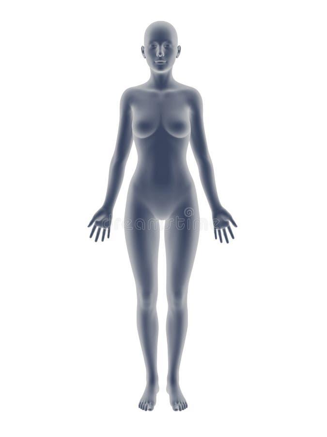 Carrocería de la mujer? con un detalle del sol ilustración del vector