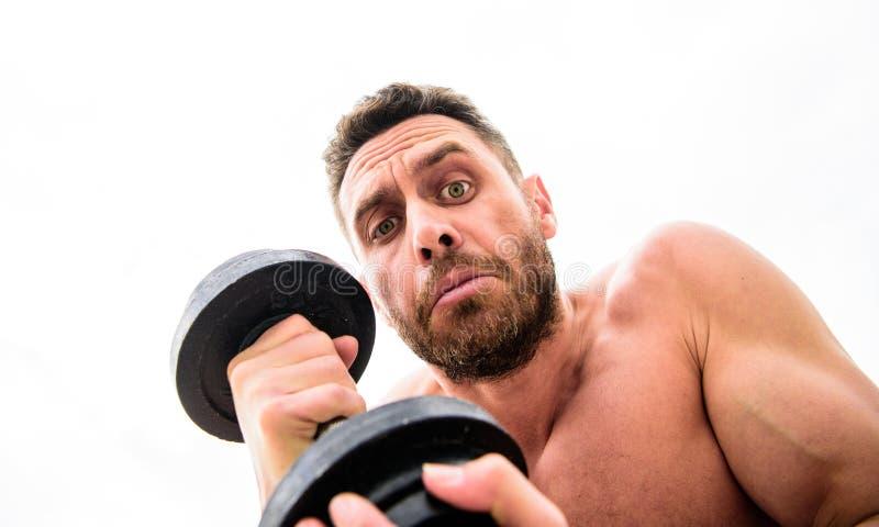 Carrocer?a atl?tica Gimnasio de la pesa de gimnasia Hombre muscular que ejercita con el barbell dieta de la salud de la aptitud D fotos de archivo