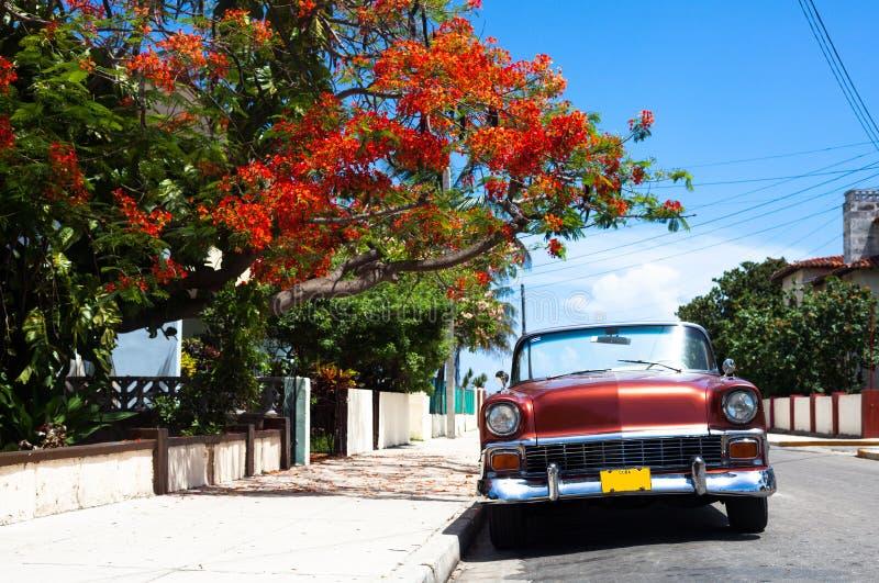 Carros clássicos americanos de Cuba pareked em havana fotografia de stock