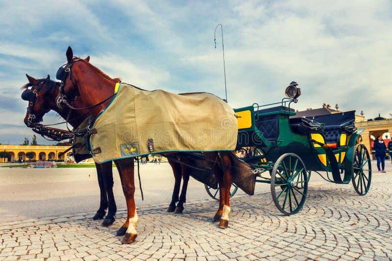 Carros del caballo en la plaza principal del palacio de Schonbrunn en Viena, Austria fotos de archivo libres de regalías