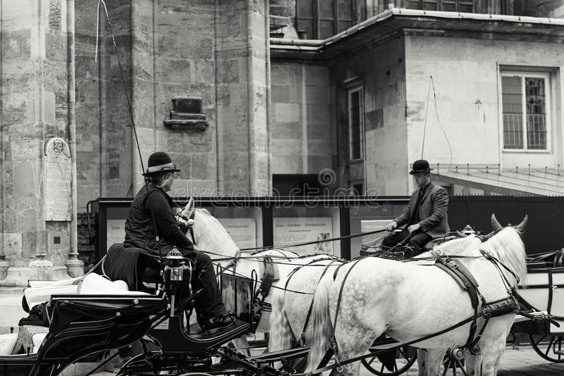 Carros del caballo, Viena fotografía de archivo
