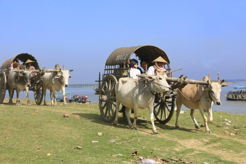 Carros do boi para turistas em Mingun, Mandalay, Myanmar imagem de stock royalty free