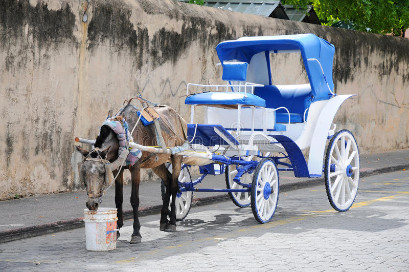 Carros Horse-drawn tradicionais, Santo Domingo imagem de stock