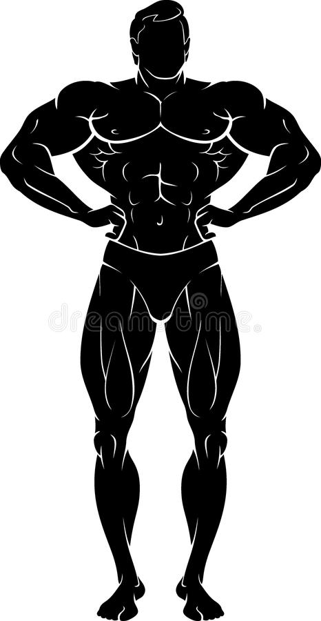 Carrossier Male Chest Muscles illustration stock