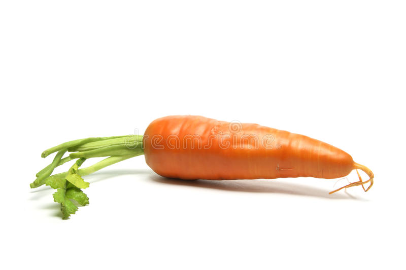 Carrot stock photography