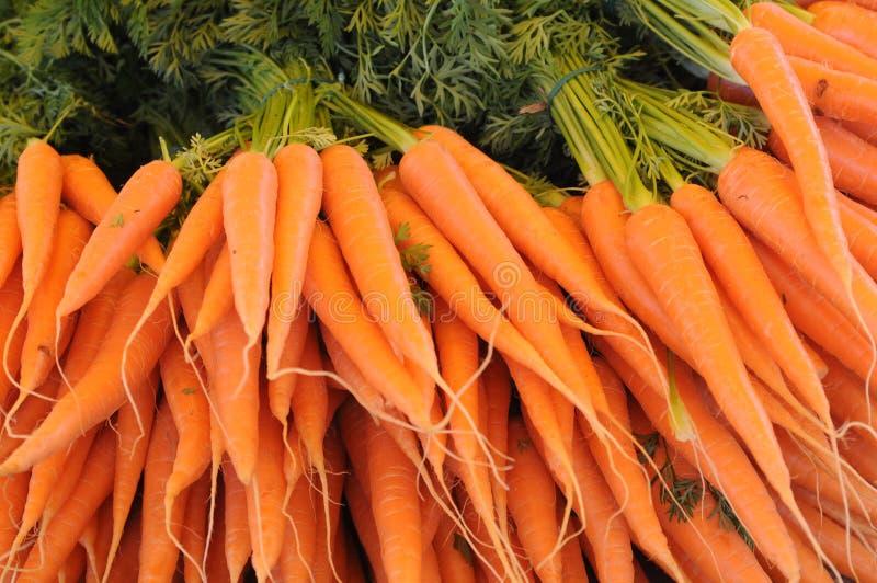 Download Carrot stock photo. Image of antioxidant, carotene, salad - 14915694