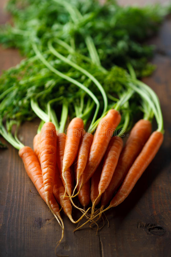 Download Carrot stock photo. Image of green, vegetable, root, edible - 17070518