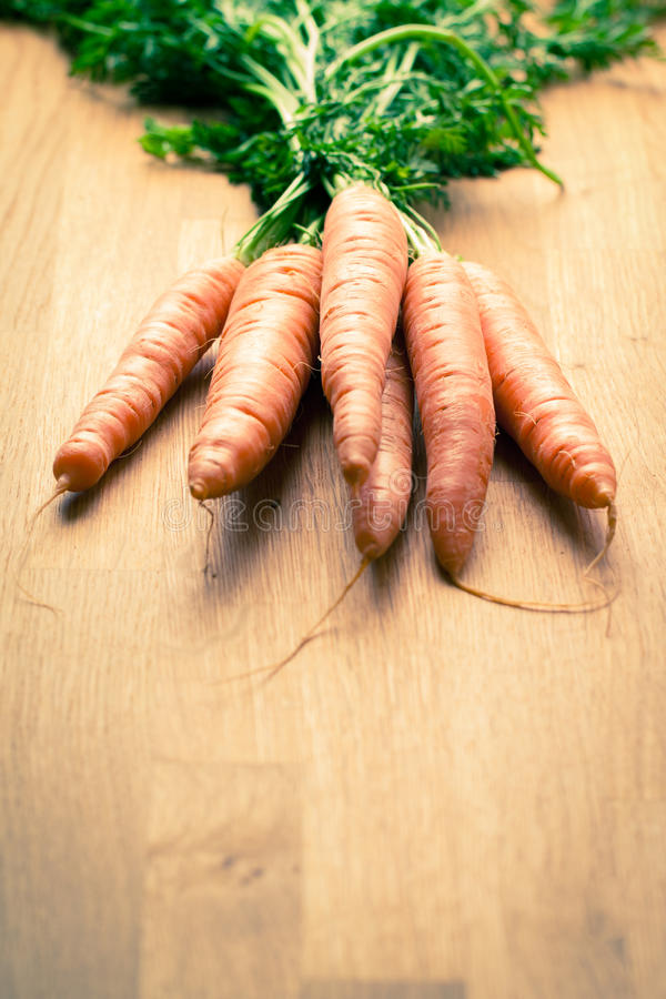 Download Carrot stock image. Image of nutritional, food, organic - 24395975