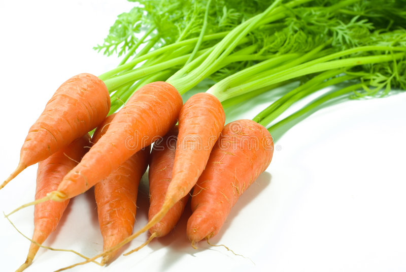Download Carrot stock photo. Image of nature, bunch, fresh, ingredient - 3807802