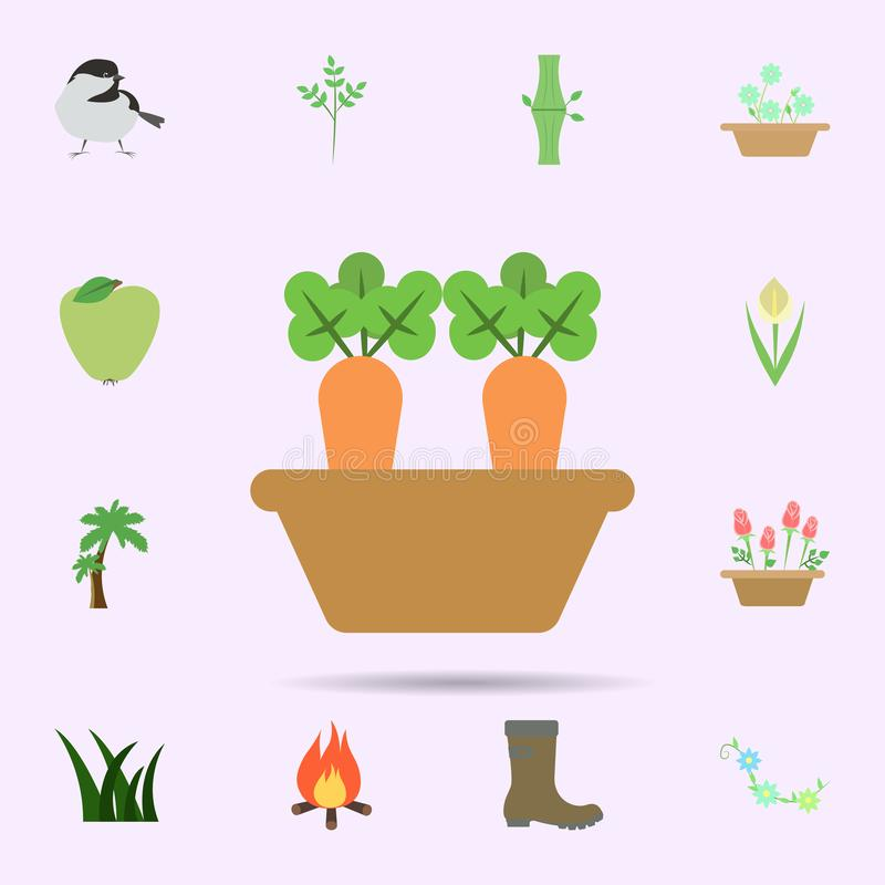 Carrot colored icon. Universal set of nature for website design and development, app development vector illustration