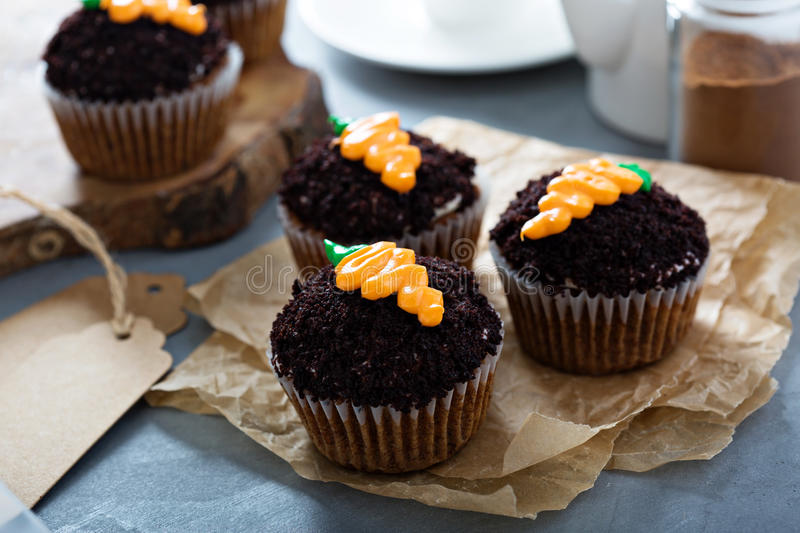 Carrot cupcakes with chocolate crumbs and frosting royalty free stock photos