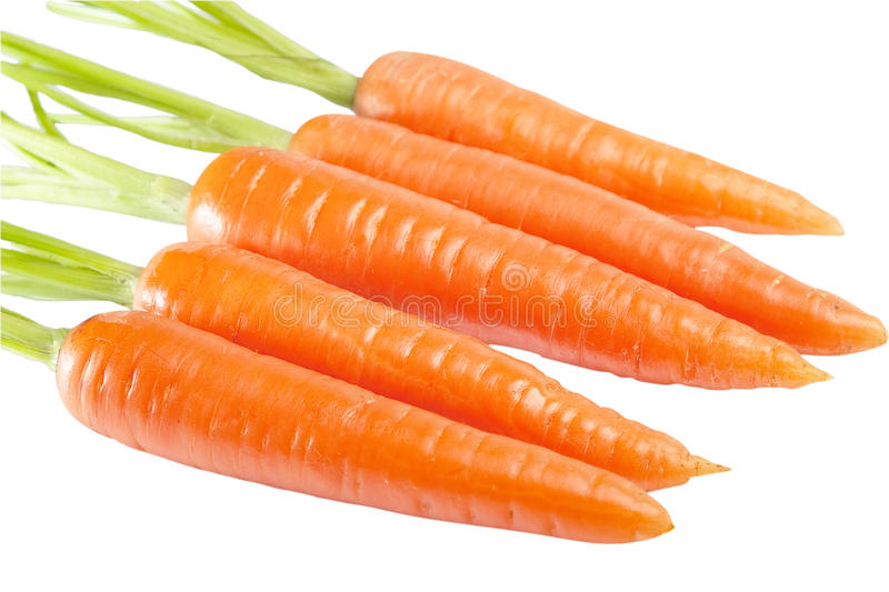 Carrot isolated. On a white background royalty free stock image
