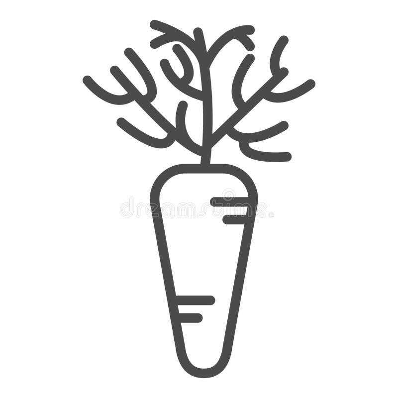 Carrot linear icon. Agriculture plant. Salad ingredient. Vegetable farm. Vegan food. Organic food. Greenery. Thin line stock illustration