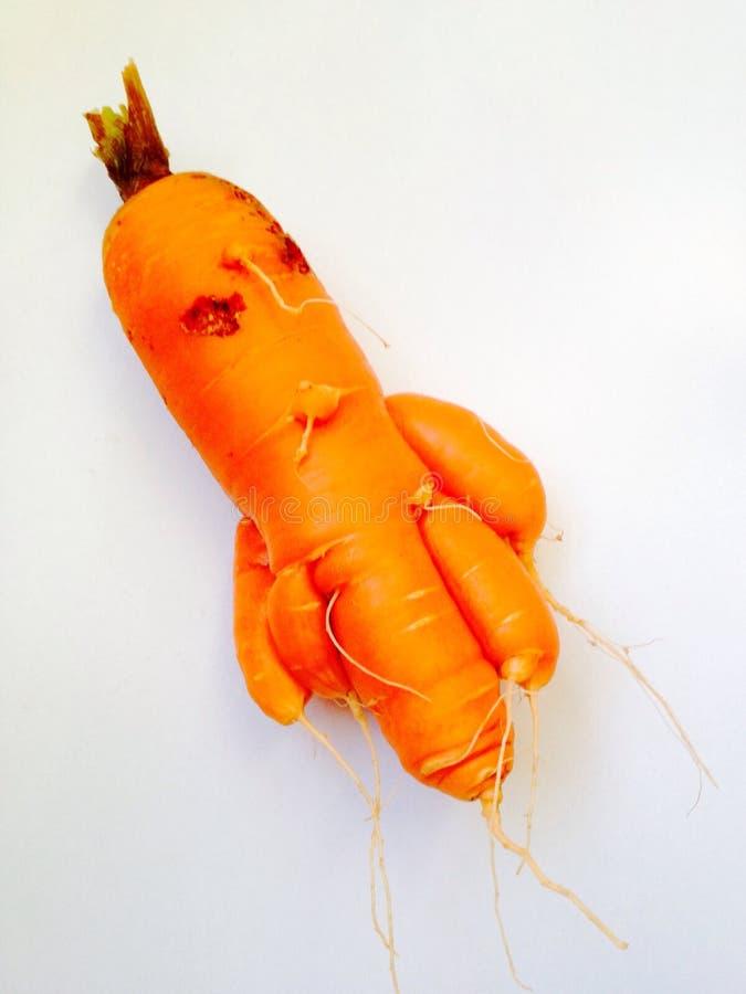 Free Carrot Monster Stock Image - 48190871