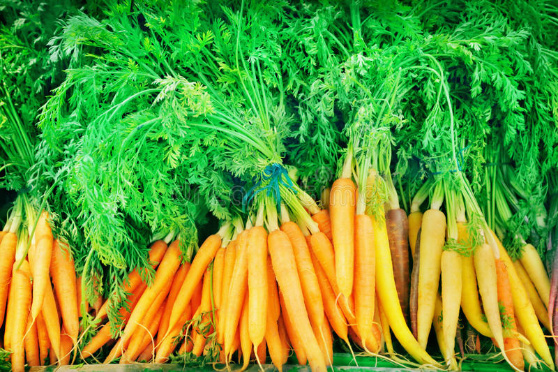 Download Carrot stock photo. Image of green, backgrounds, market - 33743984
