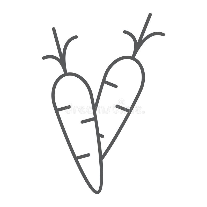 Carrot thin line icon, food and vegetable, root sign, vector graphics, a linear pattern on a white background. vector illustration