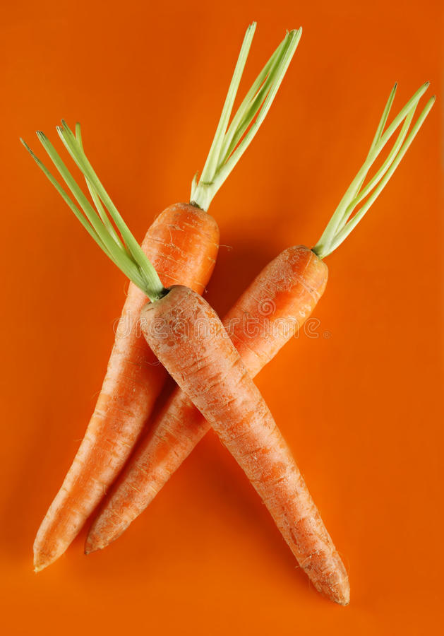 Download Carrot vegetable stock image. Image of closeup, nobody - 9642881