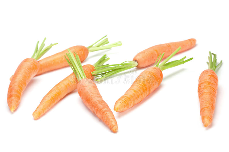 Download Carrot vegetable on white stock photo. Image of ingredient - 14858090