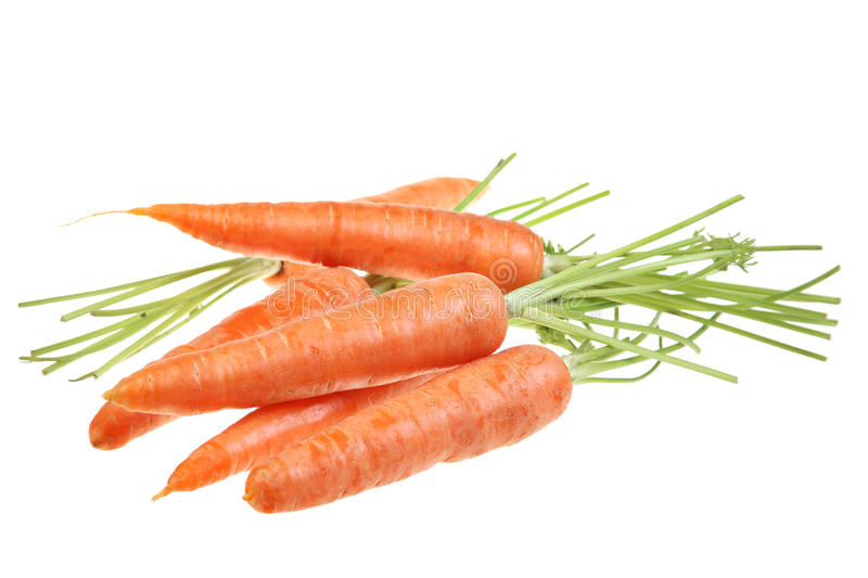 Download Carrot vegetable on white stock photo. Image of carrot - 14858132