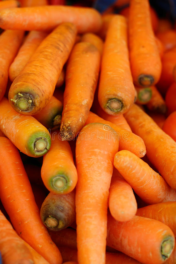 Download Carrots stock photo. Image of ripe, carotene, bunch, nobody - 18015238