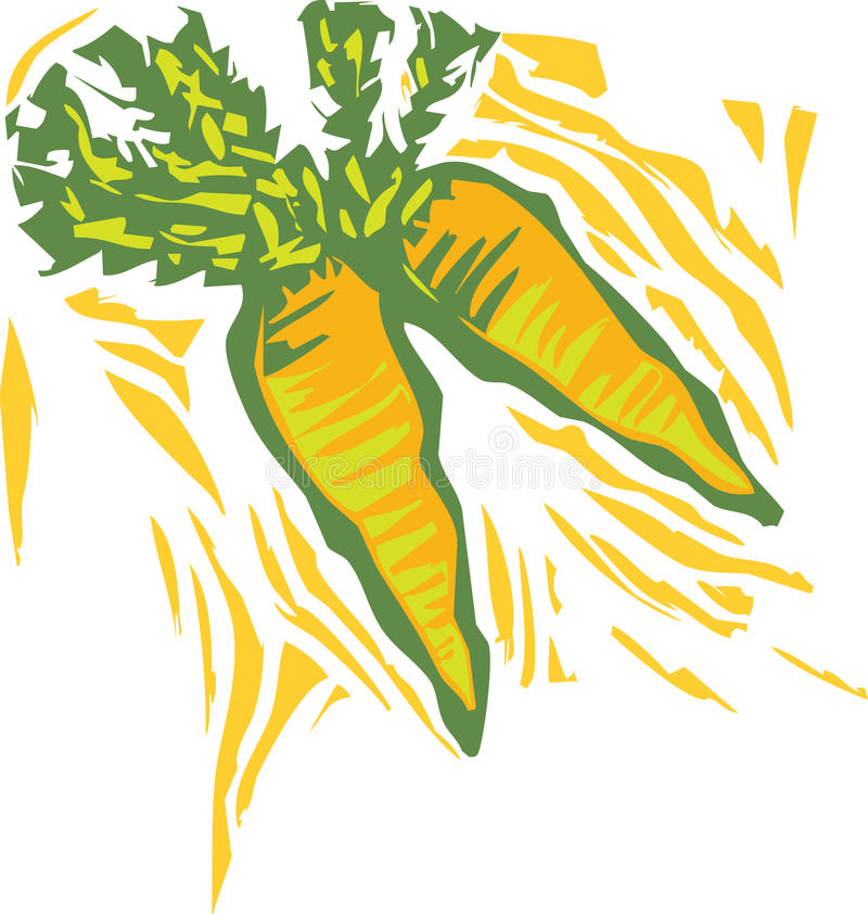 Download Carrots stock vector. Illustration of healthy, garden - 19579581