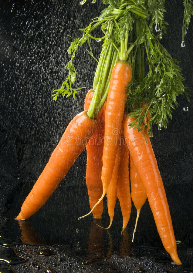 Download The Carrots Stock Photo - Image: 2316880