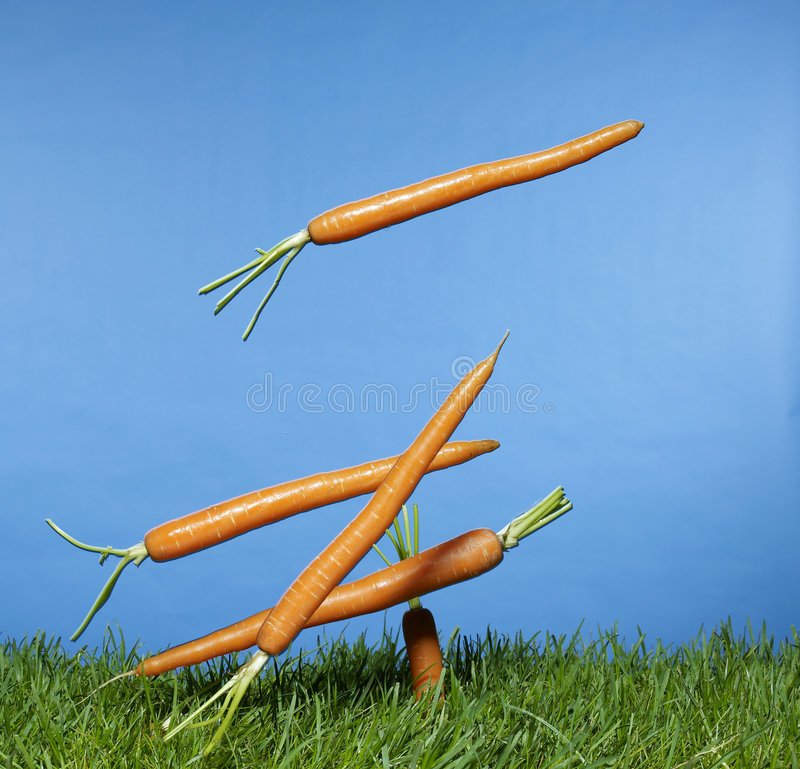 Carrots. Falling from the sky onto grass royalty free stock photography