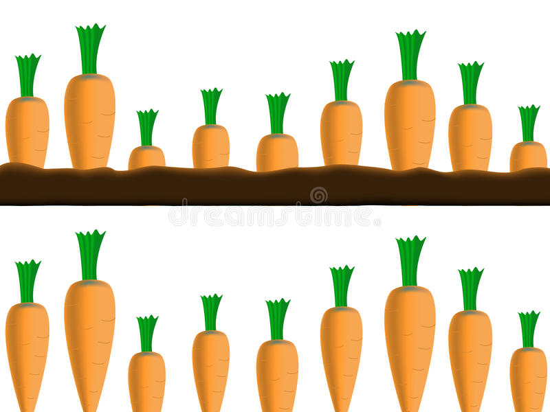 Download Carrots borders stock vector. Illustration of drawing - 16839594