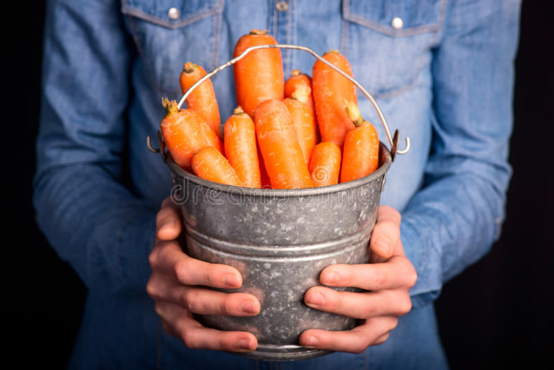Carrots bucket in hands stock photos